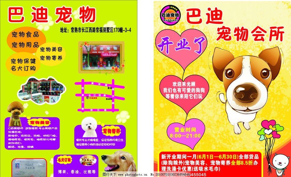 巴迪宠物宣传单 狗 开业了 绿色背景 黄色背景 宠物 宠物店 宣传单