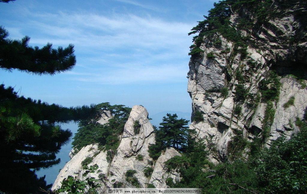 骆驼峰 蓝天 白云 松树 自然风景 旅游摄影 摄影 72dpi jpg