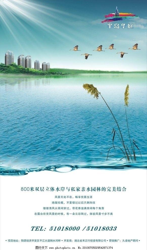 展板 地产素材 芦苇 岛 湖面 湖景 建筑 房子 广告设计 矢量 cdr