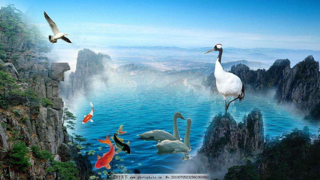 山水 仙鹤 海鸥 鸭子 鲤鱼 高山 海 远山 湖 仙湖 蓝天白云 天空 风景