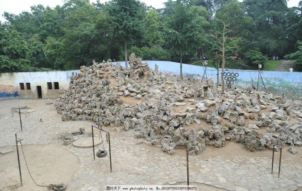 动物园风景 南京红山动物园 猴山 绿树 国内旅游 旅游摄影 摄影 300