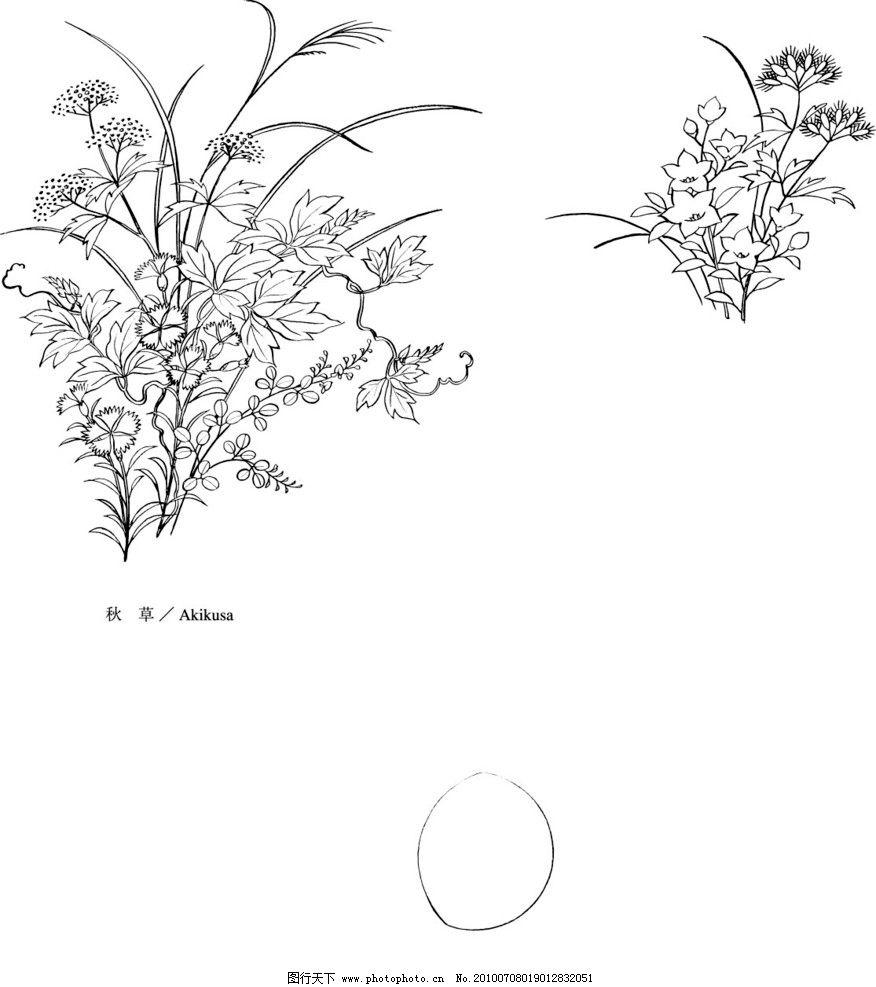 月 秋 草 草本 矢量 素材 日式 和式 植物 日本植物矢量 美术绘画