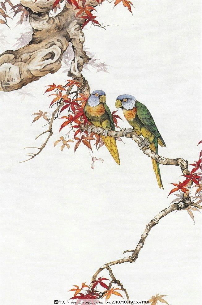 工笔画鹦鹉图片