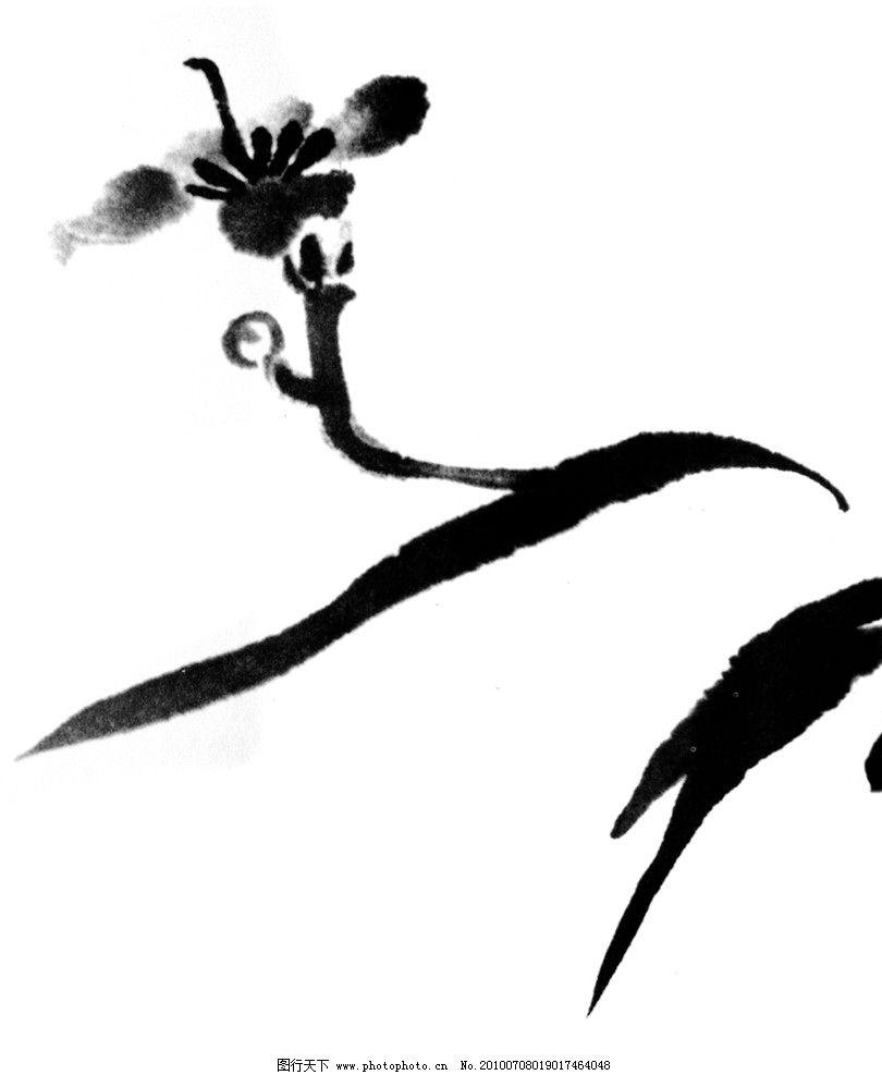 水墨画 水墨 花卉 黑白 线稿 背景 插图 绘画书法 文化艺术 设计 72