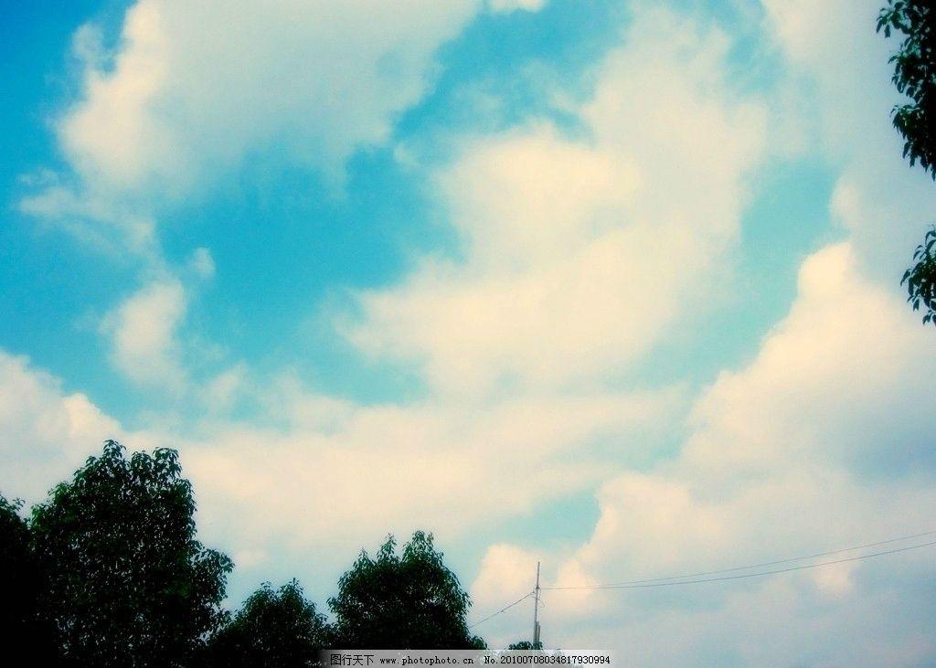 天空 天蓝 纯净 树木 自然风景 自然景观 摄影 180dpi jpg