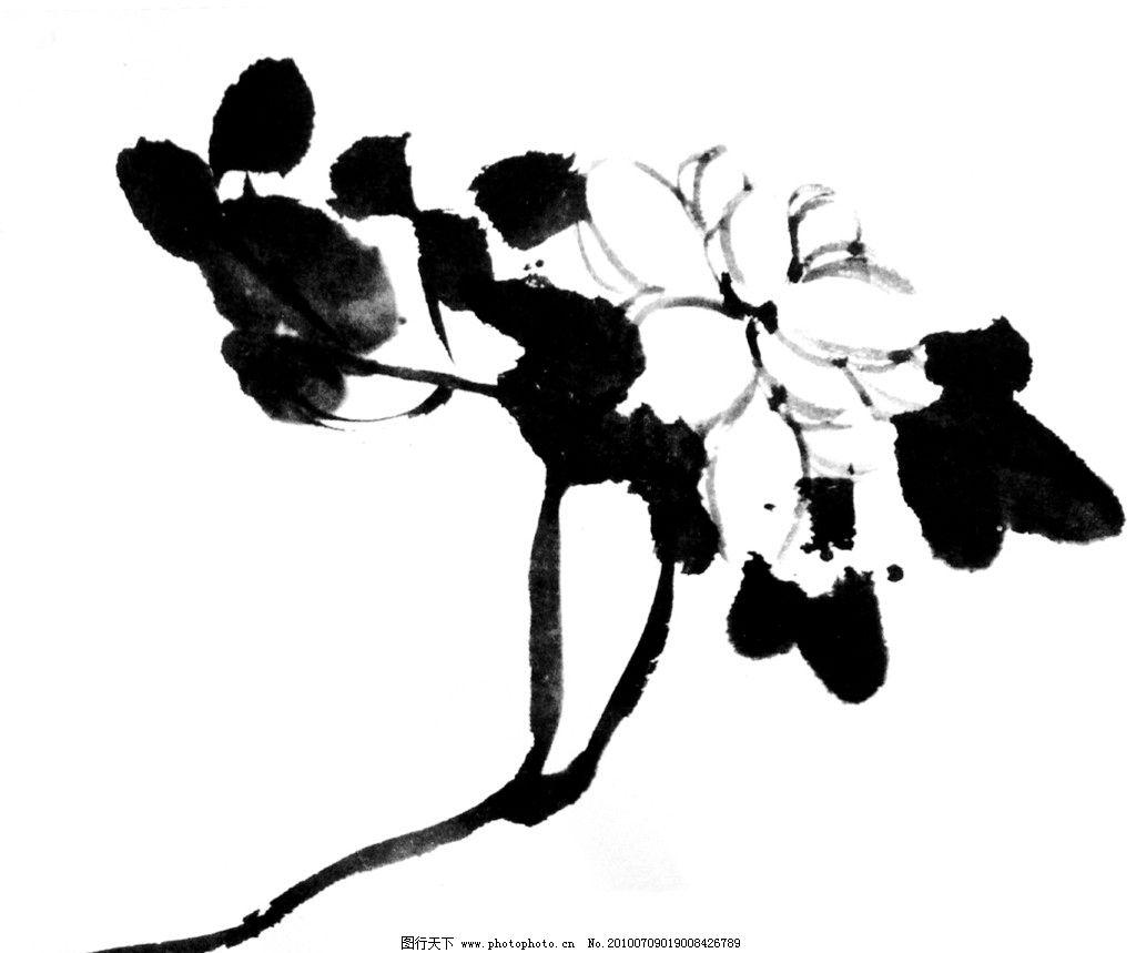 水墨 花卉 黑白 花朵 线稿 背景 插画 绘画书法 文化艺术 设计 72dpi