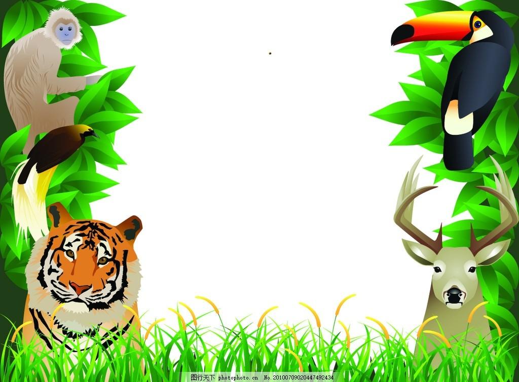 卡通相框 卡通 卡通动物 老虎 猴子 鹦鹉 鹿 相框 边框 儿童相框 矢量