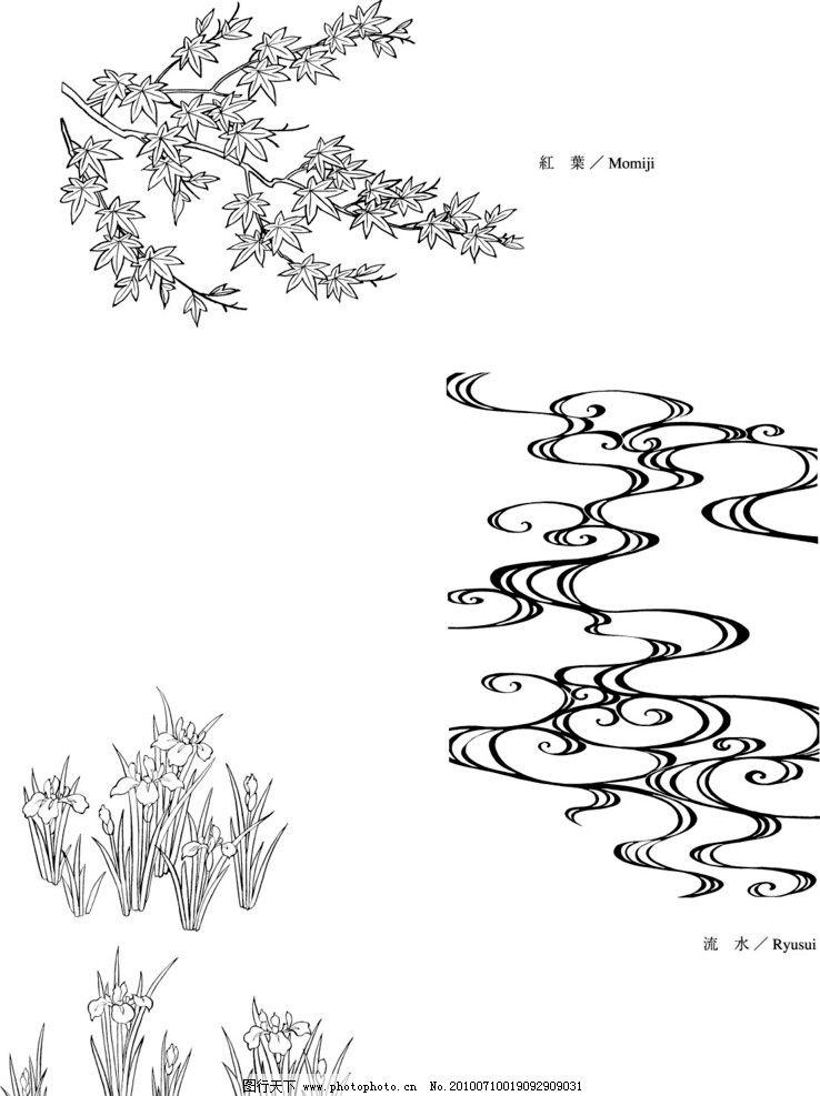 花 叶 白描 素描 线稿 和式 日式 红 枫 落叶 流 水 蒲 草 日本植物矢