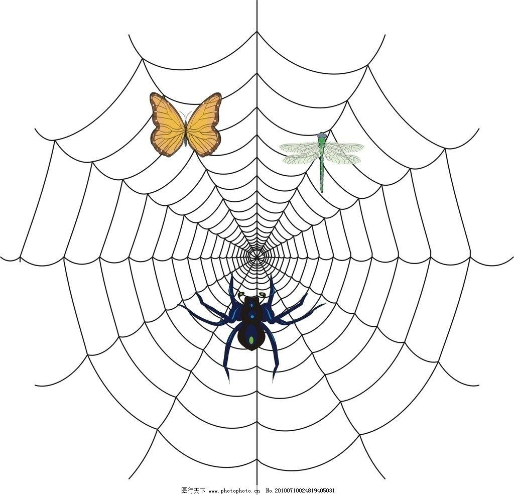 可爱的蜘蛛的简笔画图片