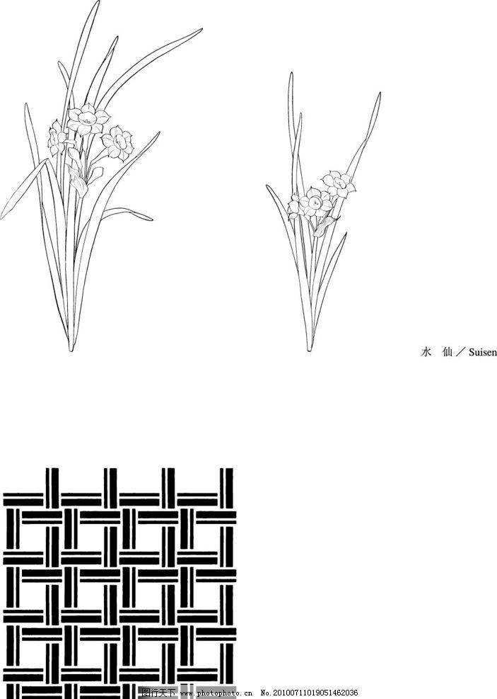 白描水仙花的步骤带图