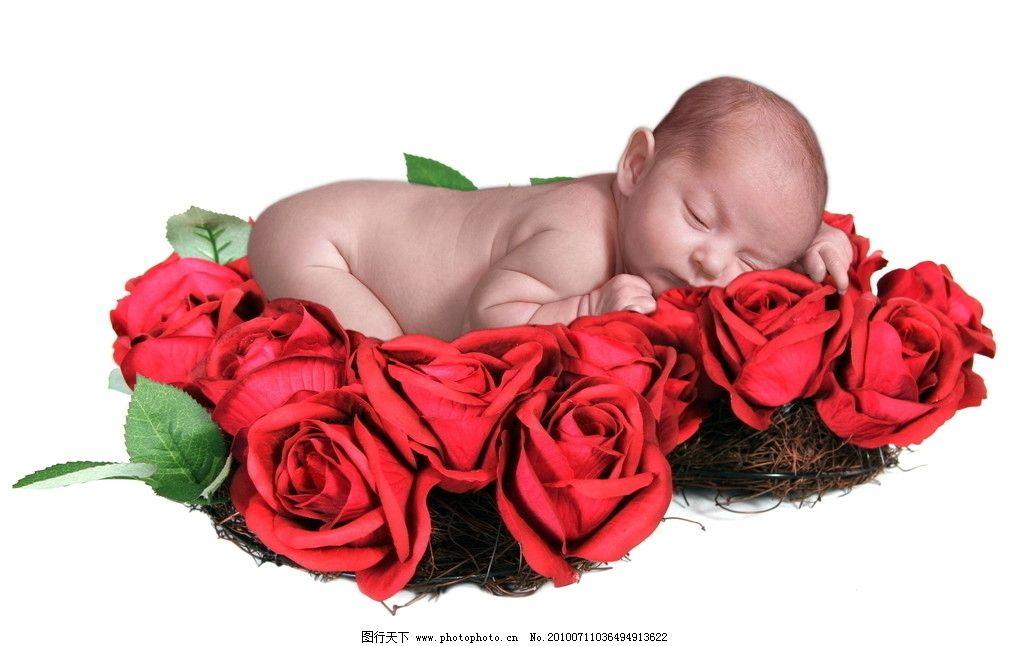 可爱 婴儿 宝宝 玫瑰 睡觉 趴着 儿童幼儿 人物图库 摄影 72dpi jpg