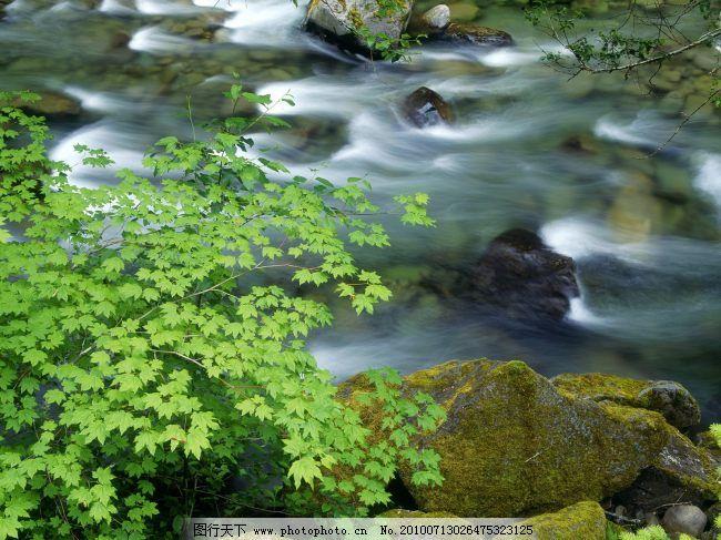 清澈山水 清澈山水免费下载 溪流 淙淙 图片素材 风景生活旅游餐饮