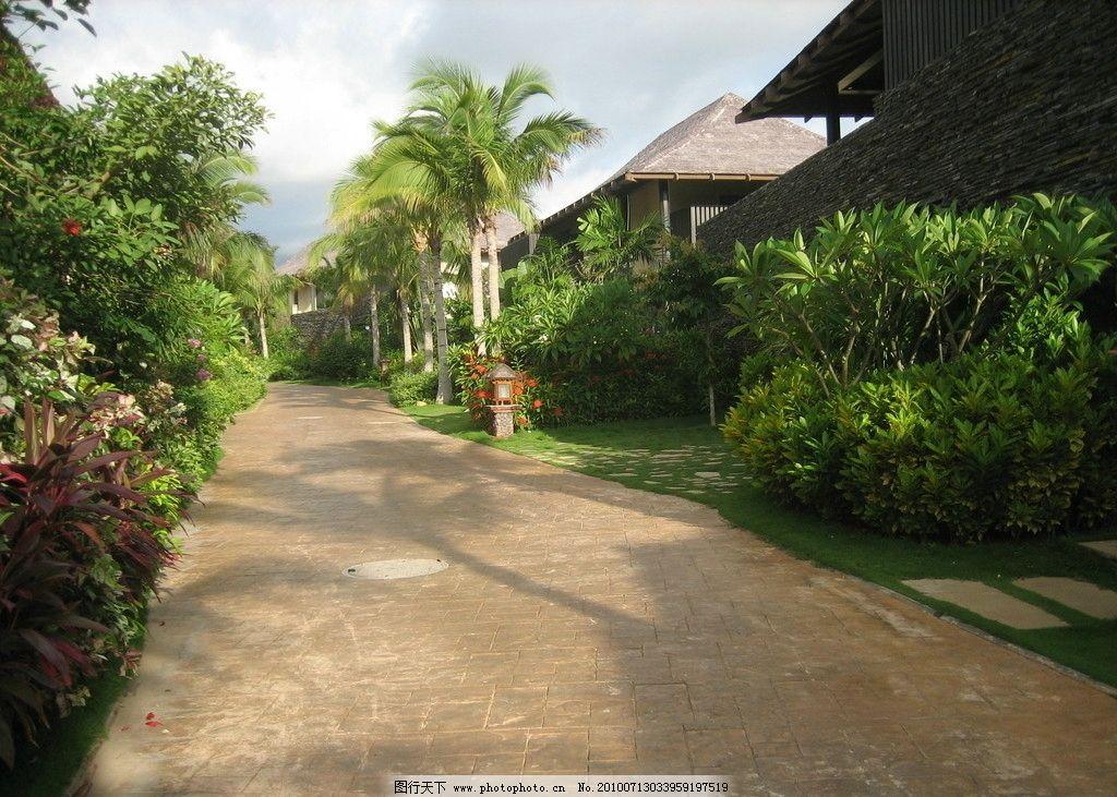 别墅风景 树木 花草 房子 小路 道路 丛木 旅游风景 国内旅游图片