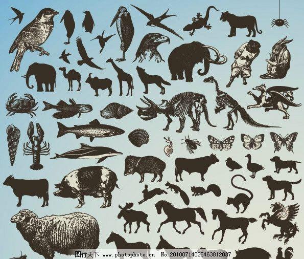 动物图标矢量素材 动物
