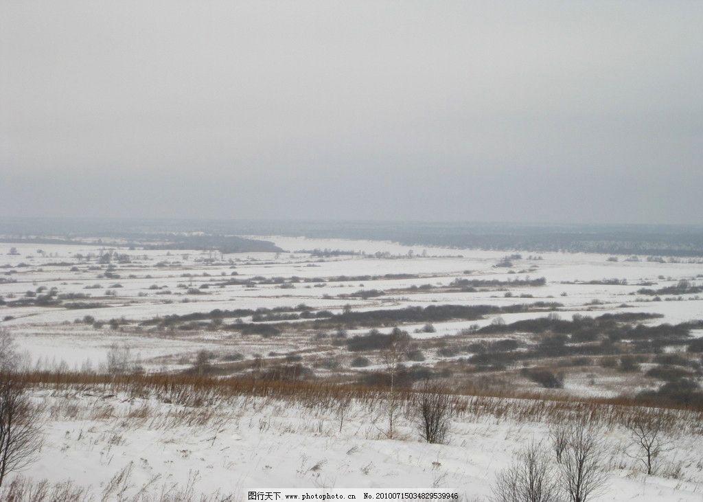 俄罗斯性质 冬天 雪 草地 朴素 自然风景 自然景观 摄影
