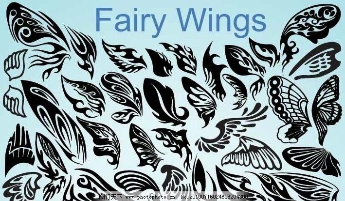 仙女翅膀 翅膀 鸟类翅膀 纹身 蝴蝶翅膀 矢量 鸟类主题 鸟类 生物世界