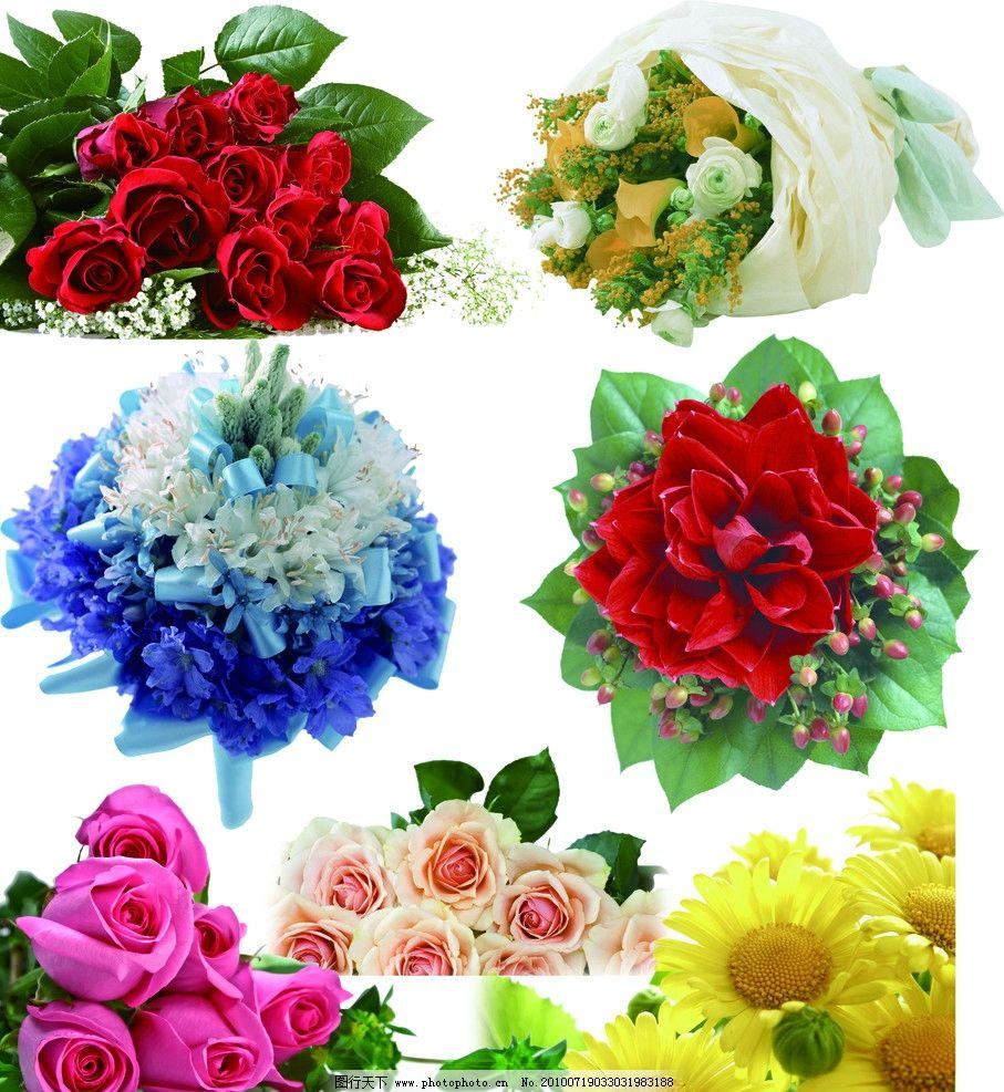 花束 手捧花 包装花 玫瑰花 装饰花 向日葵 处理好的花 爱情玫瑰