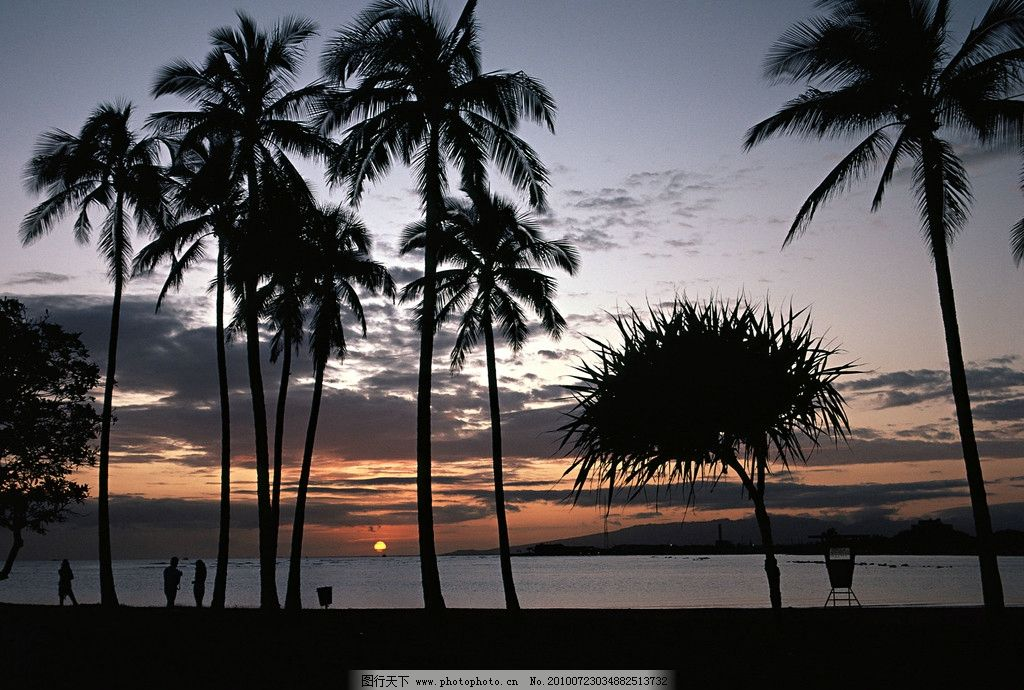 运动寓意 海边 椰子树 傍晚 夕阳 谈话 谈情 散步 自然风景 自然景观