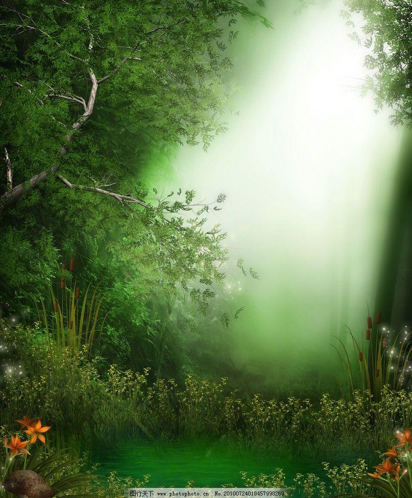 童话中的森林
