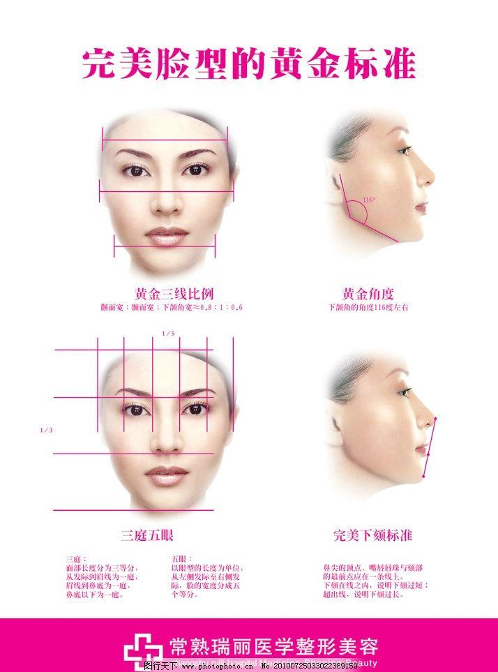 完美脸型 美女 头部 无关 鼻子 眼睛 嘴 眉毛 黄金比例 源文件