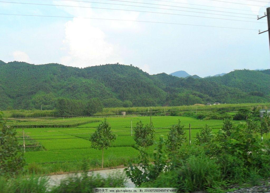 山水田园 蓝天 青山 水稻 树木 池塘 田野 田园风光 自然景观 摄影 96