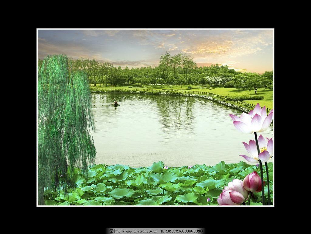 风景 白云 风景模板下载 荷花 荷叶 湖 湖畔 风景素材下载 柳树