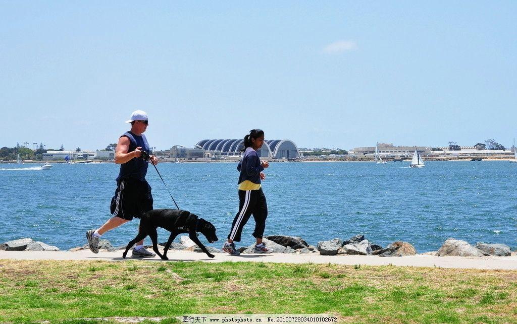海边遛狗 运动 跑步 国外风景 国外旅游 旅游摄影