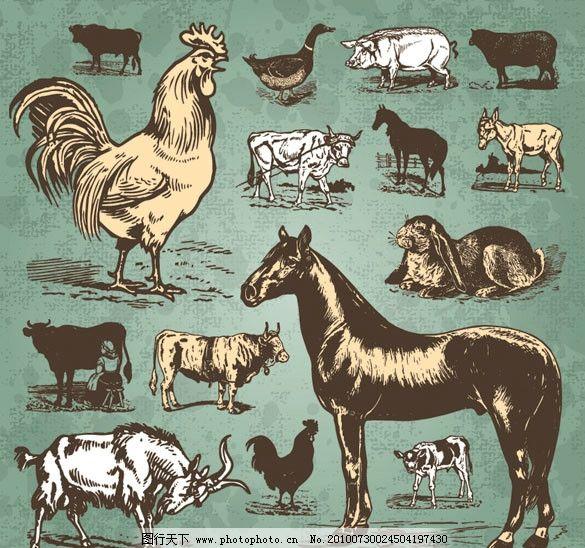 手绘素描动物矢量素材图片