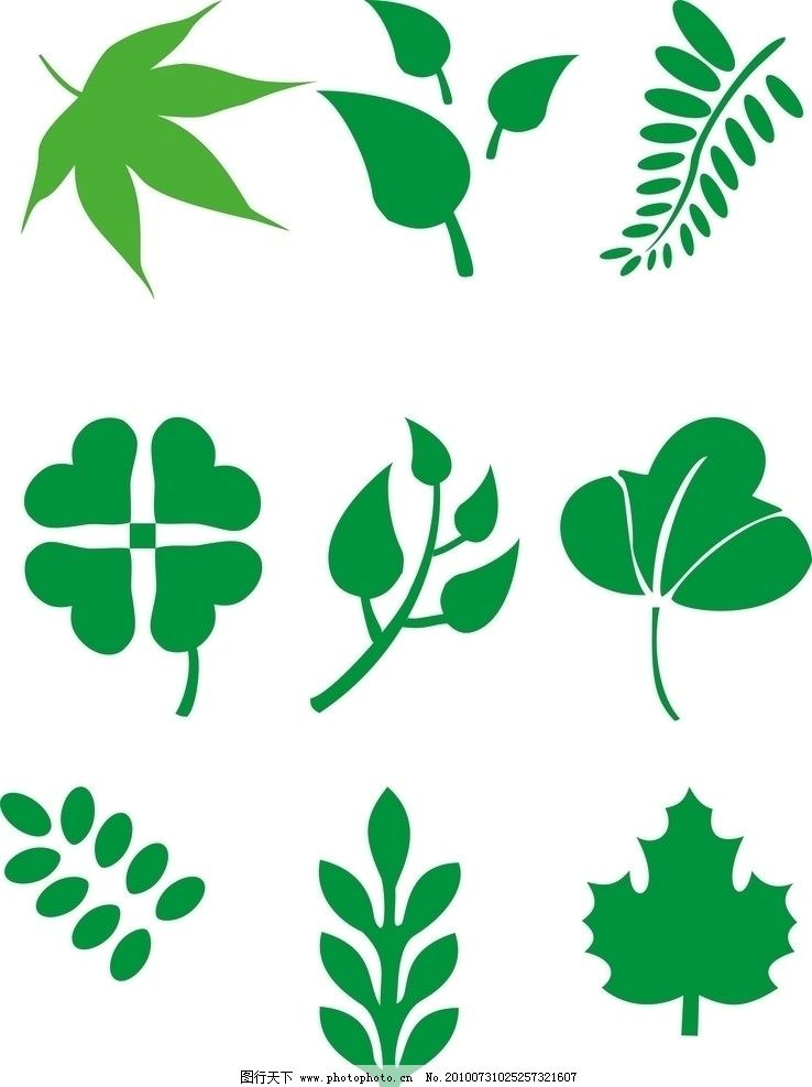 各种树叶 树叶 叶子 绿叶 底纹 矢量 花纹 树木树叶 生物世界 cdr