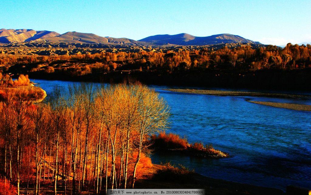 红树林 风景 红色 河流 自然 秋天 蓝天 树木 树林 自然风景 自然景观