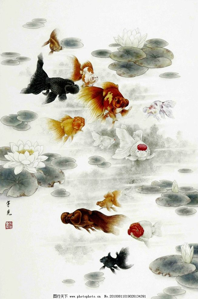 金鱼图 绘画 中国画 工笔画 水墨画 动物画 现代国画 金鱼 戏水 荷塘
