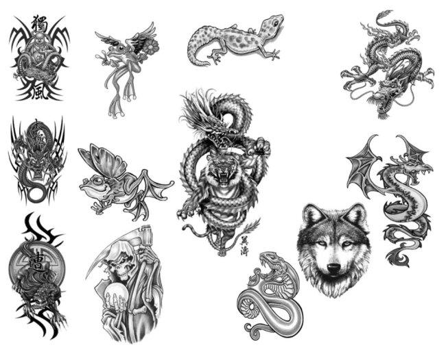纹身笔刷 纹身笔刷免费下载 壁虎 翅膀 佛 花纹 骷髅 狼龙