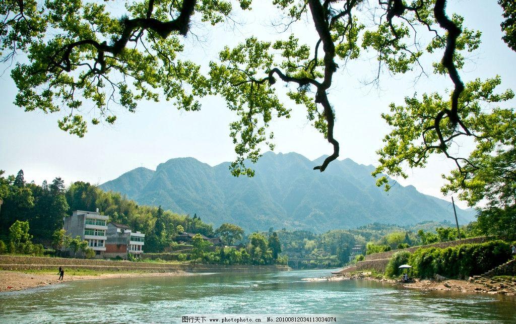 风景 小溪 山 树叶 河流 自然 泰顺 乡村 自然风景 旅游摄影 摄影 240