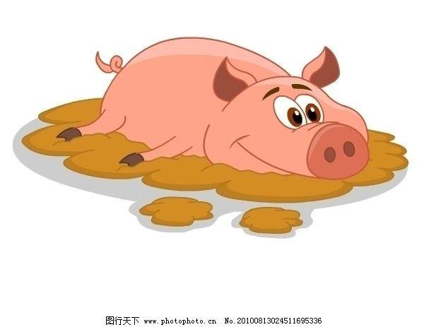 可爱的猪大眼睛