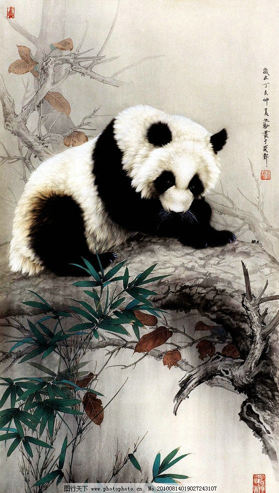 熊猫图 绘画 中国画 工笔重彩画 动物画 现代国画 国宝 竹子