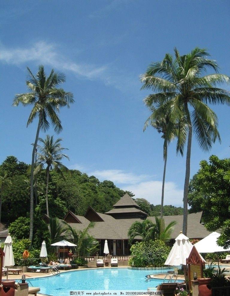泳池椰影 泰国 普吉岛 皮皮岛 酒店 游泳池 棕榈树 椰子树 山
