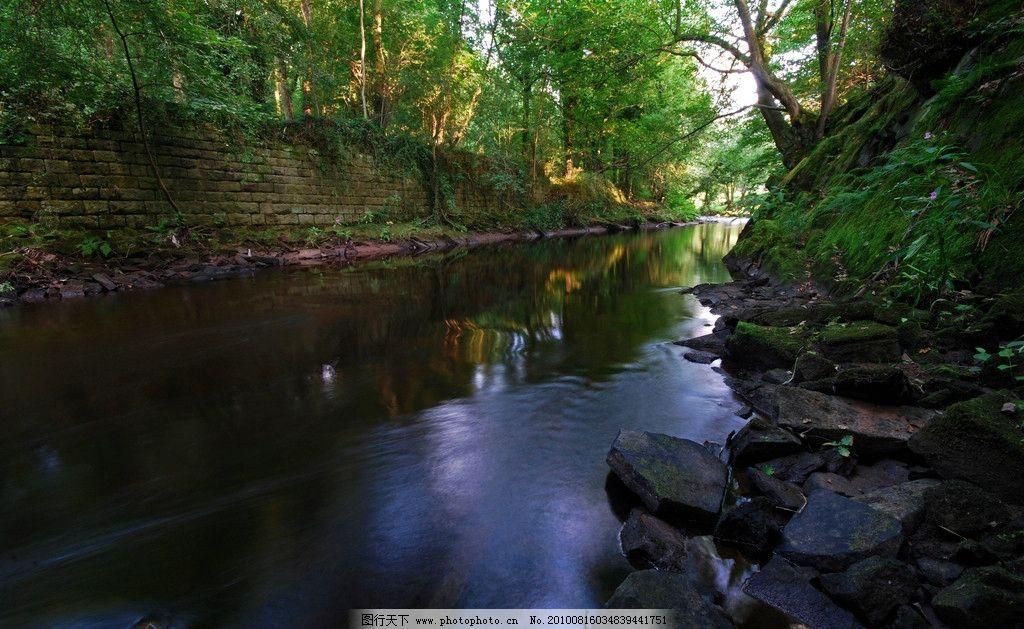 水景 水石 枯枝 自然 风光 自然风光 树 树枝 风景 丛林风景 丛林