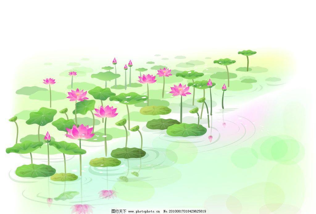 美丽荷花 荷塘 风景漫画 动漫动画 设计 100dpi jpg