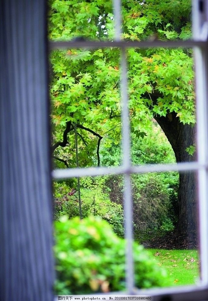 别墅 欧式别墅 花园洋房 树建筑 窗帘 绿意盎然 舒适外景 绿色草坪