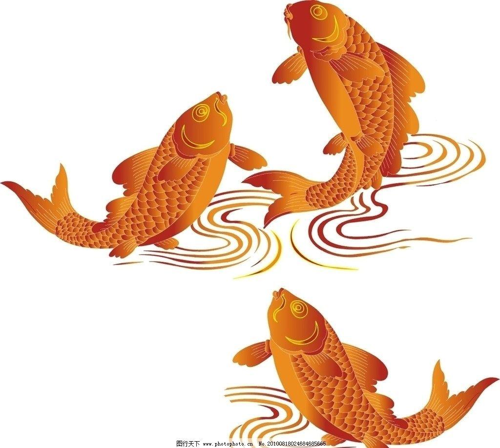 动物 鱼图片