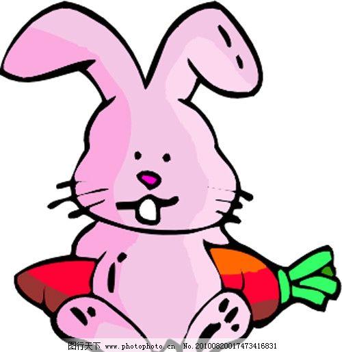萝卜粉兔图片