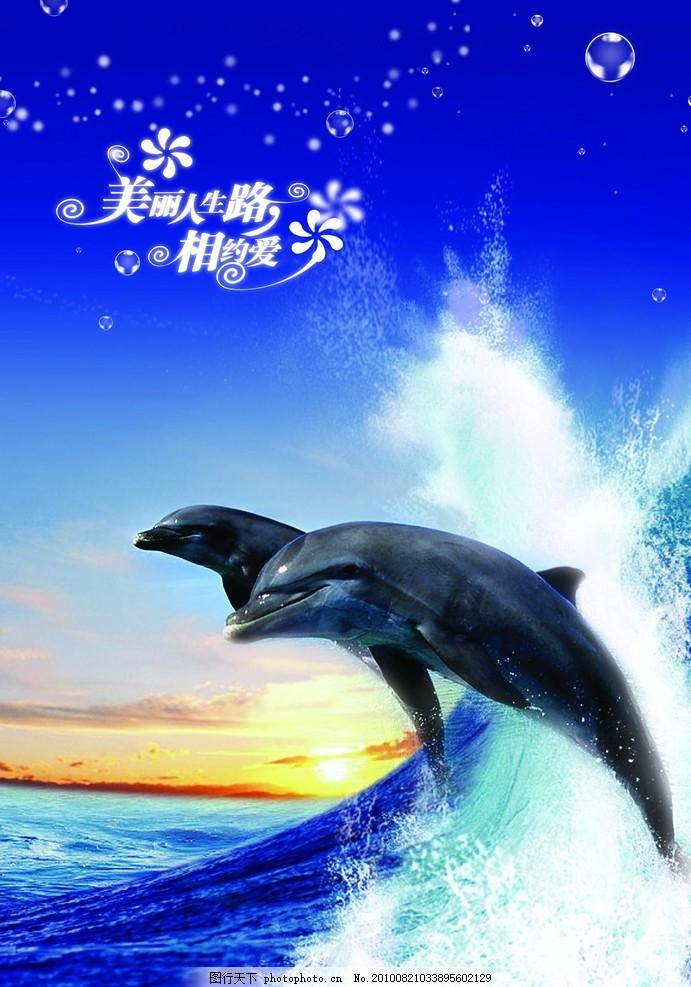 手绘鲸鱼和浪花