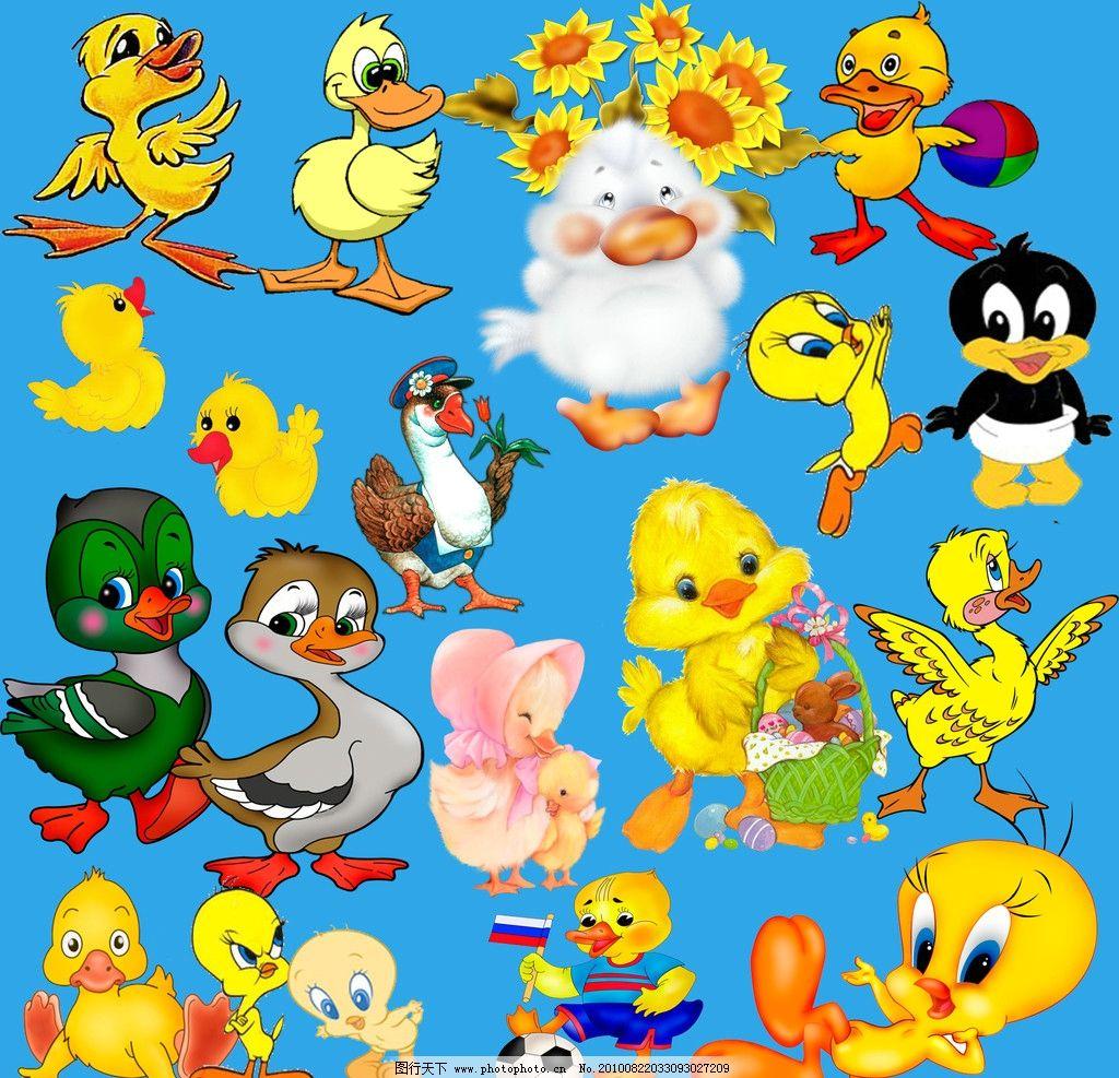 小鸭子 可爱 动物 卡通动物 psd分层素材 源文件 300dpi psd