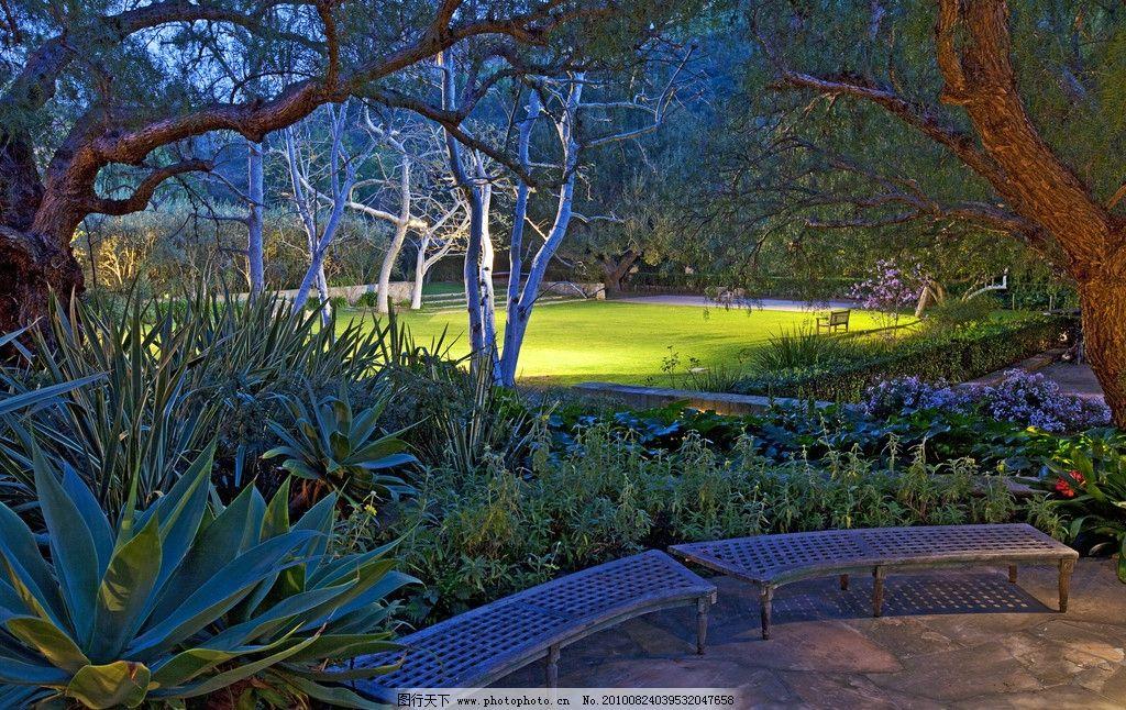 豪华别墅庄园里的后花园草坪夜景图片