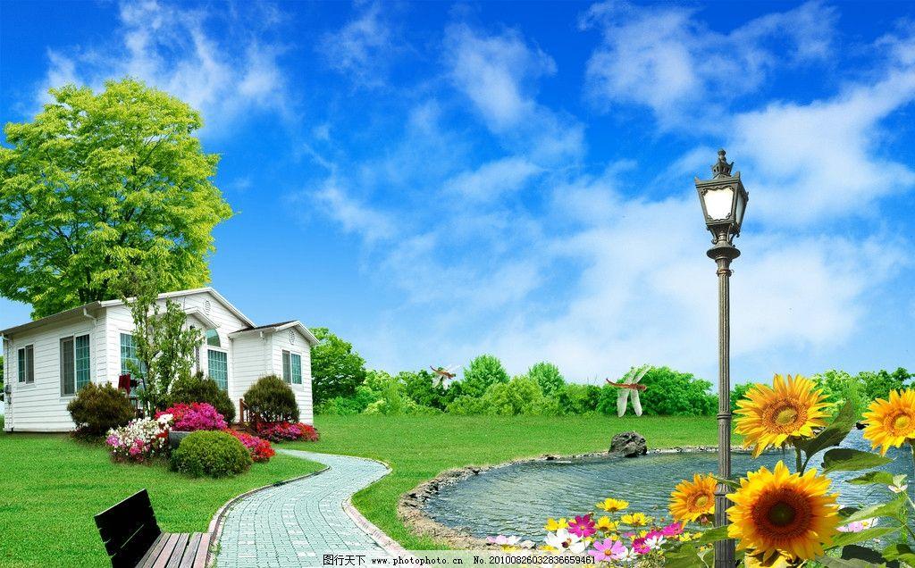 绿色家园图片,绿树 蓝天白云 荷塘 路灯 小路 向日葵