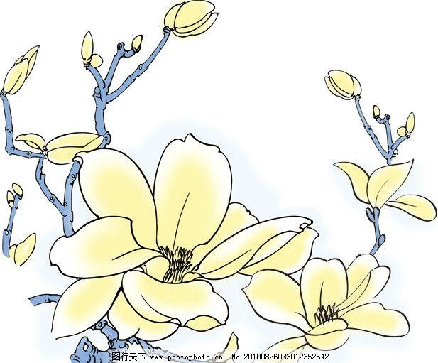 玉兰花 线描 黄色 蓝色