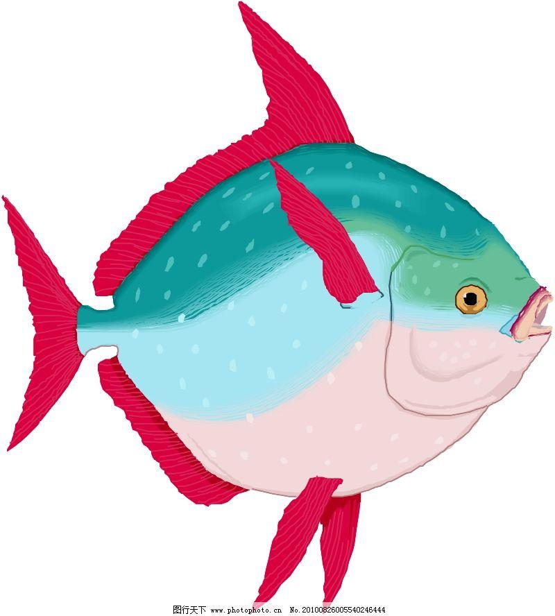 海洋动物2030_其他_矢量图_图行天下图库