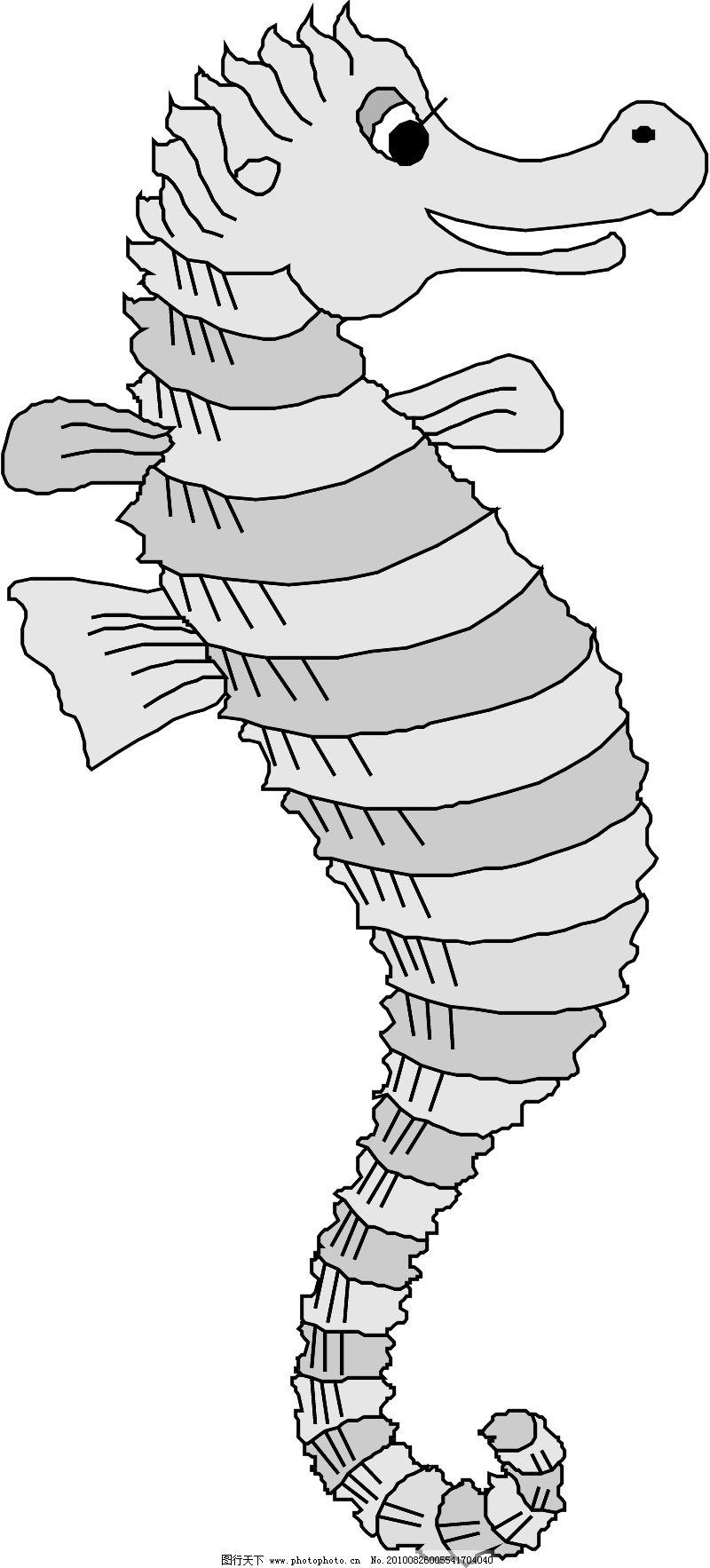 海洋动物1289