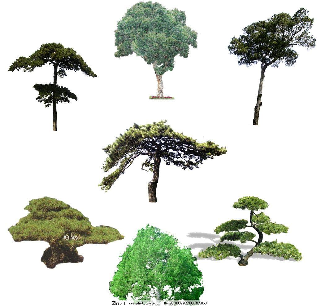连体松树剪纸步骤