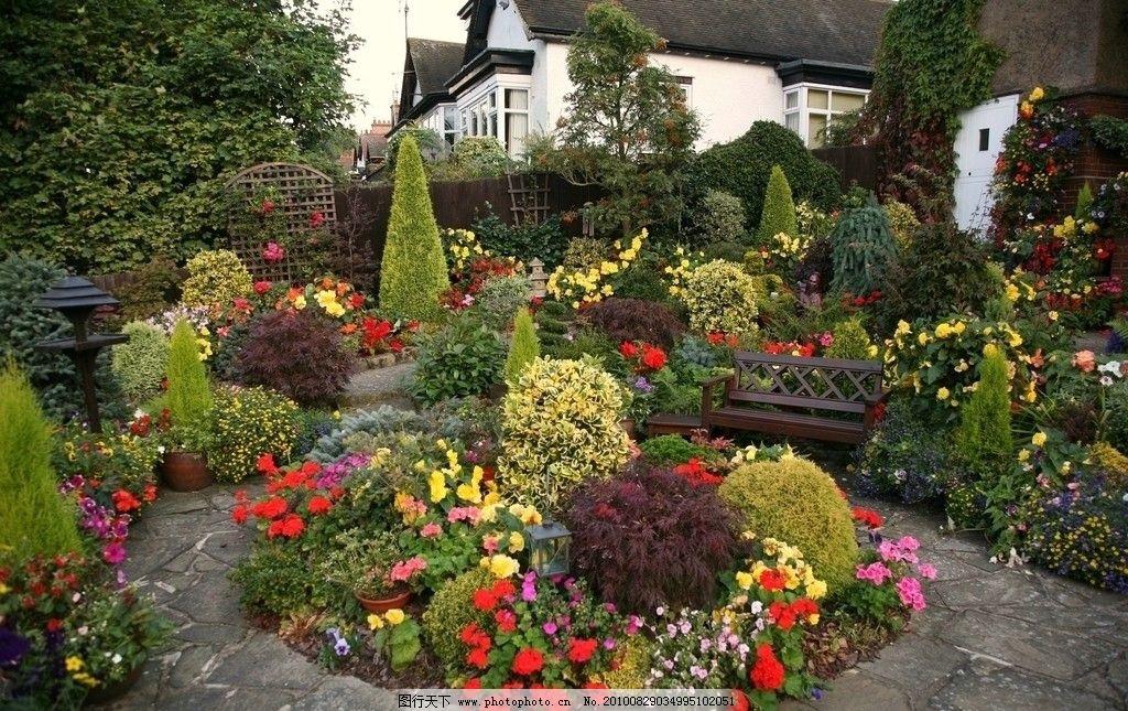 花园 园林 后花园 家里 树木 茂密 美景 庭院 庭院一角 欧式庭院